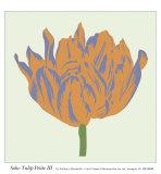 Soho Tulip Petite III Posters by Zachary Alexander