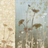 Delicate Fields I Prints by Conrad Knutsen