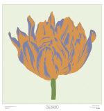 Soho Tulip III Posters by Zachary Alexander