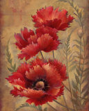 Poppy Passion II Art by Elaine Vollherbst-Lane