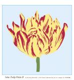 Soho Tulip Petite II Prints by Zachary Alexander