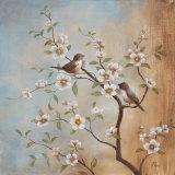 Sweet Song II Affiches par  Nan