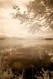 Peaceful Morning II Print by Monte Nagler