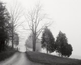 Tennessee Morning Prints by Monte Nagler
