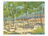Western Vista I Prints by Chariklia Zarris