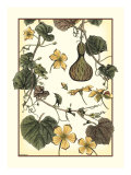 Arts and Crafts Gourd Gicl&#233;e-Druck von M.P. Verneuil