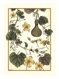 Arts and Crafts Gourd Kunstdrucke von M.P. Verneuil