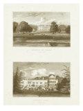 Jone's Views IV Print by J. P. Neale