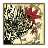 Coral Tapestry IV Giclee Print by Jennifer Goldberger