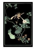 Midnight Floral I Plakater af Vision Studio