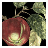 Dramatic Apple Poster by  Vision Studio