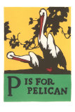 P is for Pelican Poster