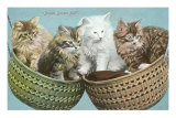 Double Basket Full, Four Kittens Posters