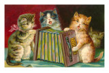 Kittens Playing Concertina Poster