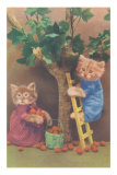 Dressed Kittens Picking Fruit Affiches