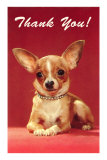 Thank You, Chihuahua Print