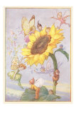 Fairies with Sunflower Posters
