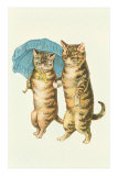 Cats with Umbrella Print