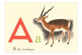 A is for Antelope Lminas
