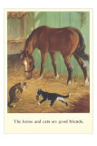 Horse and Cats are Good Friends Posters