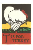 T is for Turkey Photo