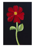 Red Cosmos Giclee Print by Soraya Chemaly