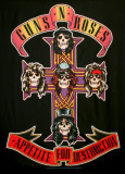 Guns N Roses Appetite for Destruction Pósters
