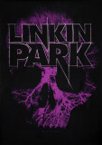 Linkin Park - Skull Affiches