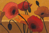 Poppy Curry III Prints by Shirley Novak