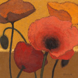 Poppy Curry I Print by Shirley Novak