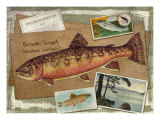 Brook Trout Giclee Print by Kate Ward Thacker