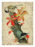 Chicadee Reproduction procédé giclée par Kate Ward Thacker