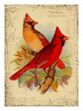 Roter Kardinal Giclée-Druck von Kate Ward Thacker