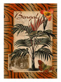 Bengal Giclee Print by Kate Ward Thacker