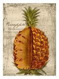 Pineapple Giclée-Druck von Kate Ward Thacker