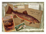 Brown Trout Giclee Print by Kate Ward Thacker