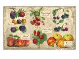 Gourmet Fruit Giclée-Druck von Kate Ward Thacker