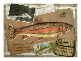 Rainbow Trout Giclee Print by Kate Ward Thacker