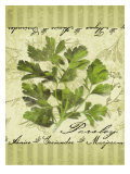 Parsley Giclee Print by Kate Ward Thacker