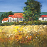 HAY FIELD IN THE DORDOGNE Limited Edition by Davy Brown