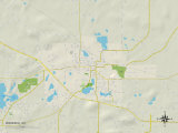 Political Map of Waupaca, WI Photo