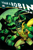 DC Comics - Batman and Robin Prints