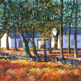 FARM BUILDINGS THROUGH TREES Collectable Print by Davy Brown
