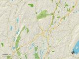 Political Map of Hamden, CT Prints