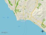 Political Map of Dana Point, CA Art