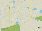 Political Map of Trinity, FL Prints