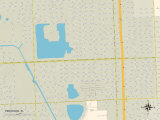 Political Map of Pinewood, FL Photo