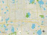 Political Map of Pine Hills, FL Print