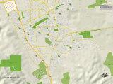 Political Map of Pleasanton, CA Photo