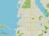 Political Map of Palm Harbor, FL Print